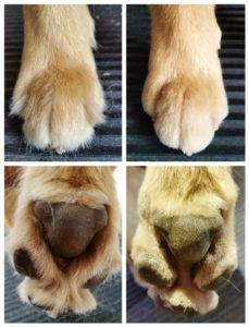 6. Corte de pelo en manos y pies